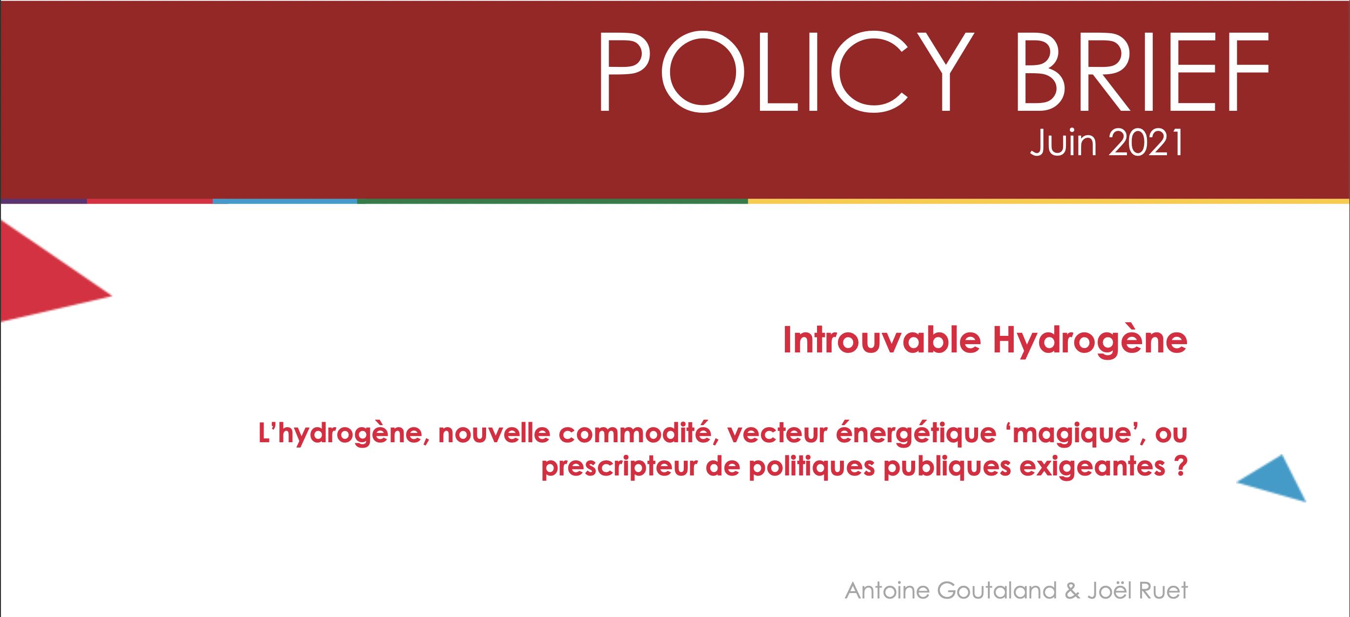 Policy Brief – L'hydrogène, nouvelle commodité, vecteur énergétique 'magique', ou prescripteur de politiques publiques exigeantes ?